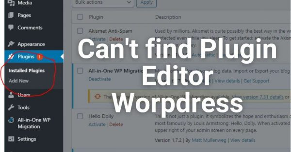 How to fix hidden plugin editor on WordPress 2020 | I can't find my plugin editor